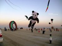 Kite_Festival_in_Kuwait